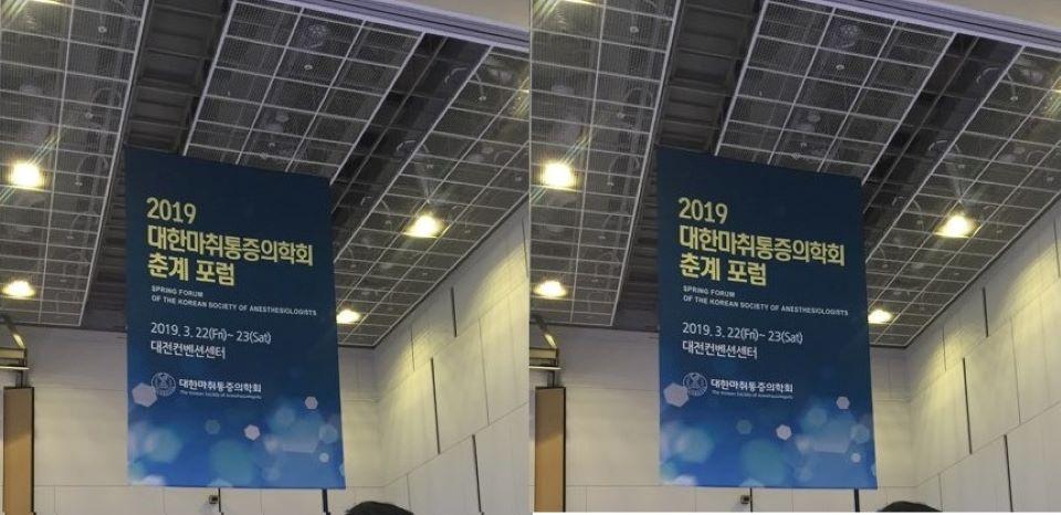 2019 마취통증의학회 춘계포럼